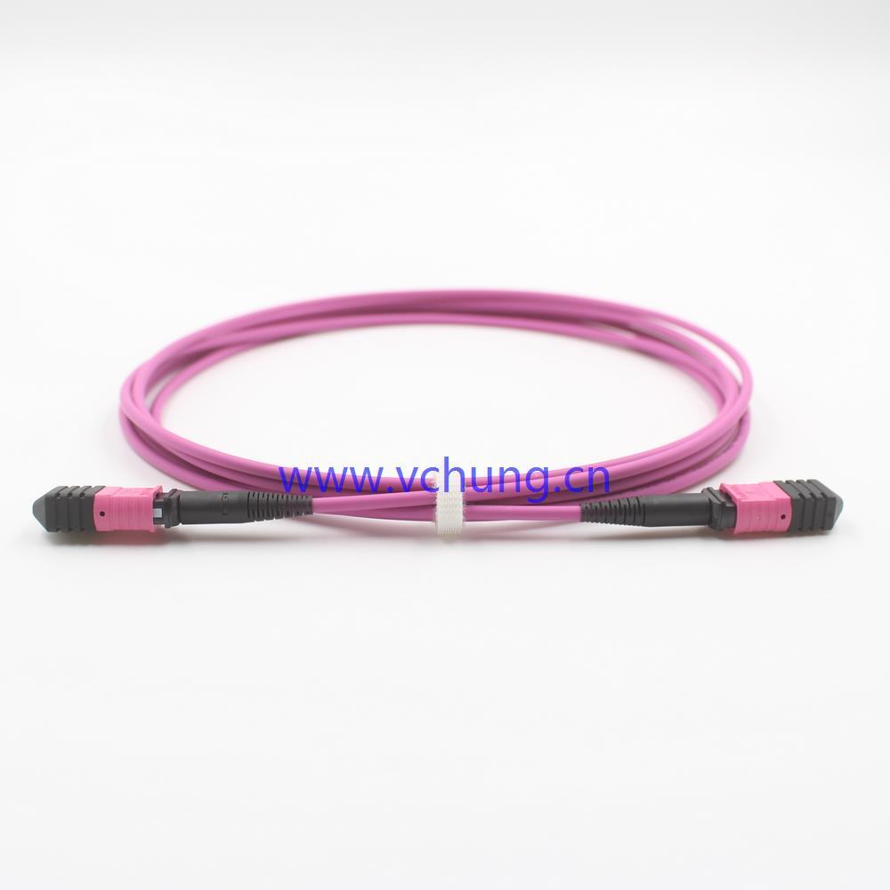 12芯MPO多模OM4紫色束状